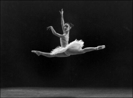 Comment appelle-t-on plus précisément un spectacle de danse ?