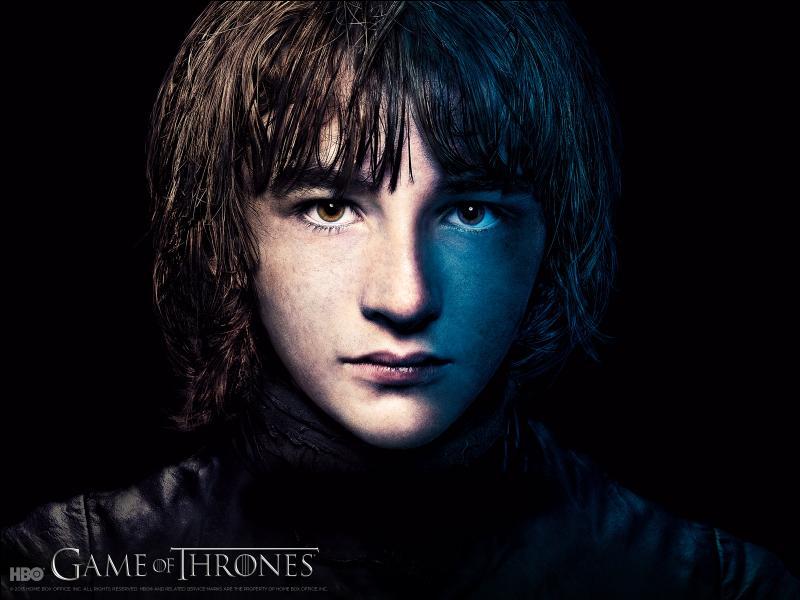 Qui a donné les plans pour fabriquer une selle spéciale pour Bran ?