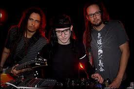 Avec quel groupe de rock Skrillex fait-il équipe pour quelques chansons ?