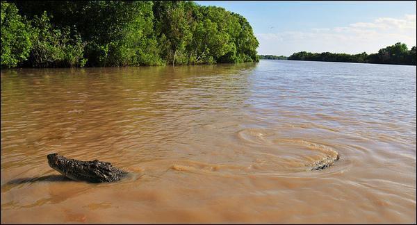 Quel terrifiant record possède l'île de Ramree en Birmanie ?