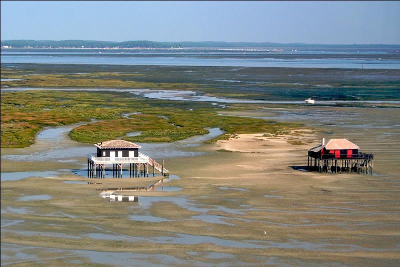 Les deux cabanes tchanquées de l'île aux oiseaux située au centre du Bassin d'Arcachon, sont devenues l'emblème du Bassin, en ...