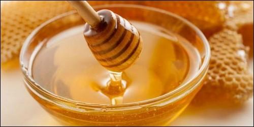 Cet animal fabrique le miel, il s'agit de :