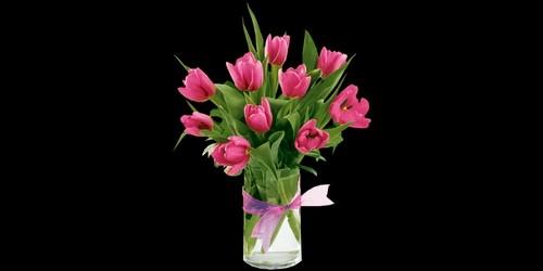 On met des fleurs dans :