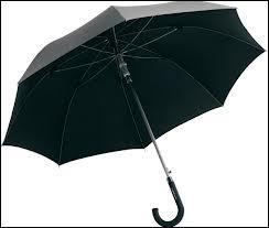 Si les ...... avaient des ailes, personne ne sortirait sans parapluie !