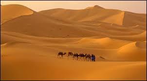 Quel est le désert le plus aride de la planète ?