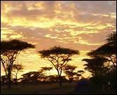 Niveau 9 - Courage, c'est l'avant-dernière question ! Combien de couleurs la Tanzanie a-t-elle sur son drapeau ?