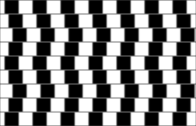 Sur ce damier, on peut voir que les lignes sont :