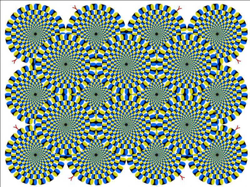 Sur cette illusion, on voit des serpents :