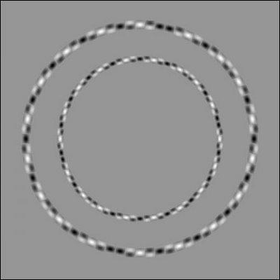 Certes, nous voyons 2 cercles, mais ils sont :