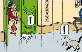 Vous n'avez sans doute pas oublié la première rencontre de Milou et du chat du capitaine Haddock au début des 7 boules de cristal. Mais vous souvenez-vous de son nom ?