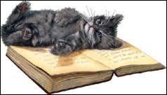 Qui a comparé son chat à un presse-papier ?