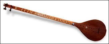 Comment se nomme cet instrument de musique ?