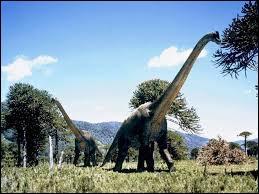 Comment se nomme ce dinosaure ?
