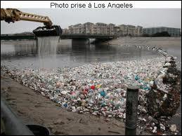 Devinez la durée de vie d'une bouteille en plastique jetée dans la nature !