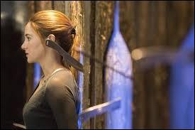 Elle rencontrera par la suite Will et Al. Pendant l'entraînement Tris prendra la défense de Al. Quatre va alors devoir lui lancer plusieurs couteaux dessus. Combien ?