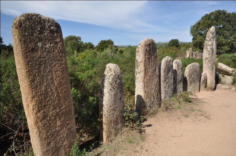 Dans quel département admirerez-vous les monolithes de Palaggiu?