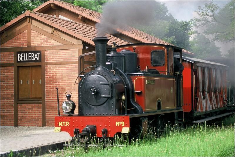 Quelle est cette ville du Loiret, où vous pourrez visiter l'intéressant musée des Transports avec une petite ligne de chemin de fer sur laquelle circulent d'originaux Décauville?