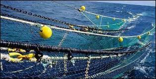Un filet de pêche disparaît en :