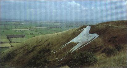 Ce dessin est gravé dans le flanc d'une colline crayeuse en bordure de la plaine de Salisbury. Où se situe précisément ce cheval géant ?
