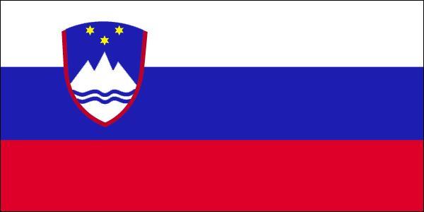 Ce drapeau appartient à :