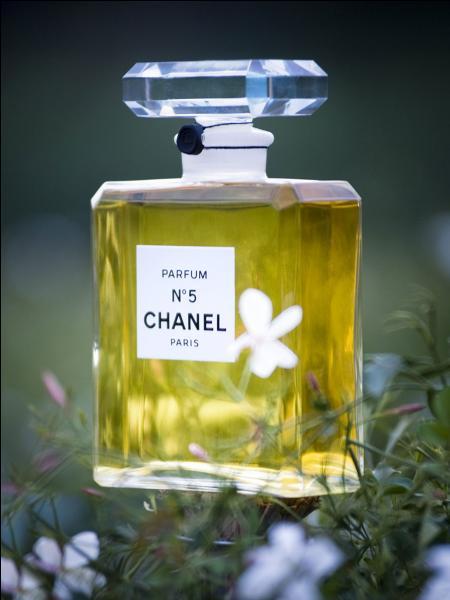 Alpes-Maritimes. Parfum !