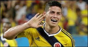 Auteur d'une Coupe du monde remarquable avec la Colombie, meilleur buteur de la compétition avec 6 réalisation, James Rodriguez a gagné le droit de signer au