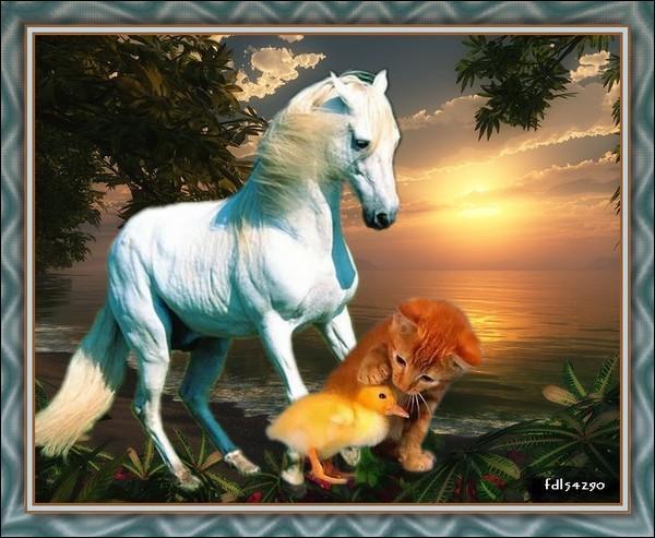 Un autre dresseur américain, John Lyons, nous dit : Votre cheval vous ressemble comme votre reflet dans un ...