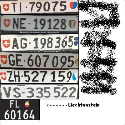 """Sur une plaque d'immatriculation suisse les lettres """"ZG"""" sont l'indicatif du canton de Zurich."""