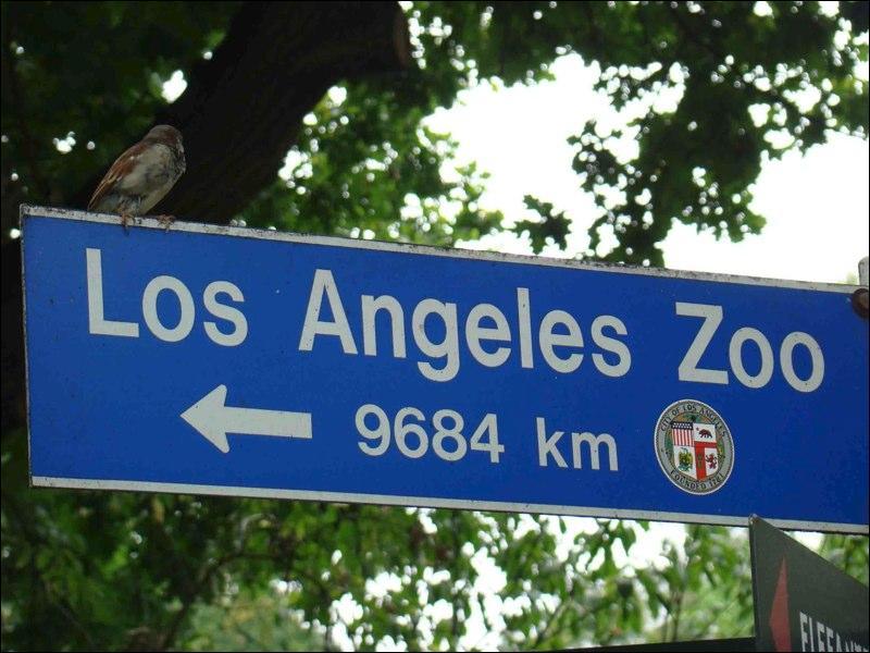 Bon, on sait déjà que le zoo de Los Angeles, c'est pas la porte à côté, mais dans quel pays est situé ce panneau ? (Tiens, j'ai cru apercevoir un ours.) sur l'écusson.)