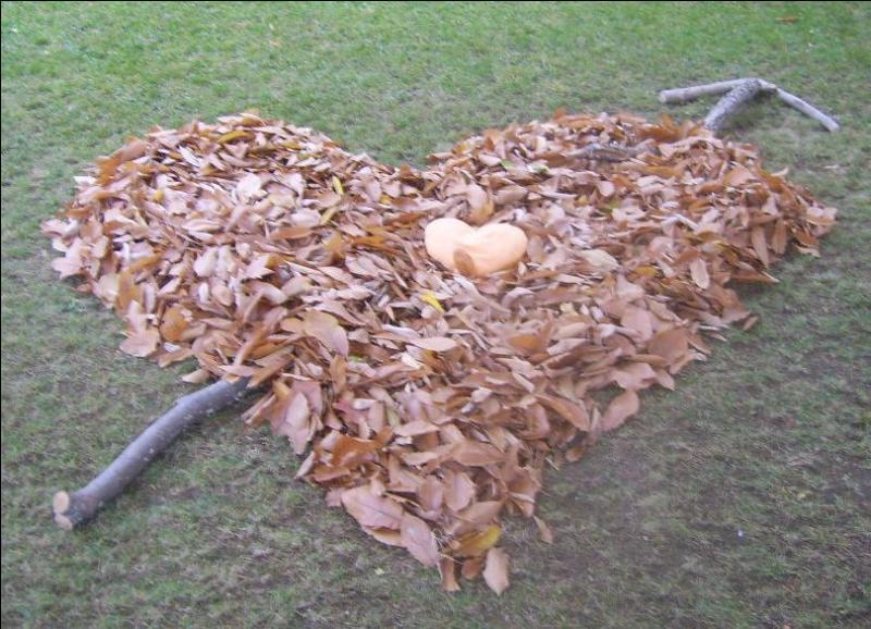 Et chaque fois les feuilles mortes- Te rappellent à mon souvenir - Jour après jour les amours mortes - N'en finissent pas de mourir. Qui a écrit ces paroles tirées d'une chanson ?