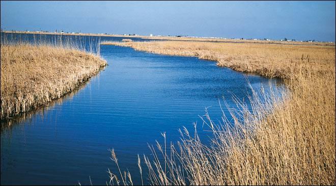 L'Ebre est le plus long fleuve entièrement espagnol.