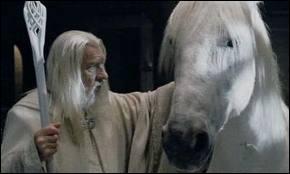 Quel est le nom de la monture du magicien Gandalf ?