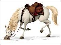 Encore un cheval de princesse ! Celui-ci se comporte comme un chien...