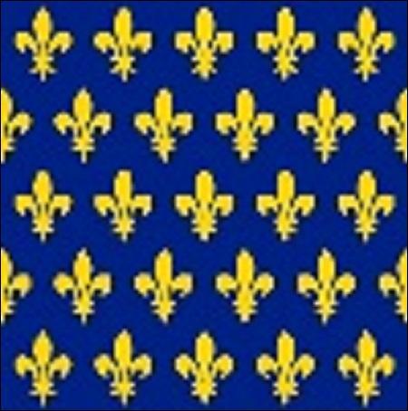 La photo représente la bannière de France autour de 1147. Elle a été utilisée pour une croisade. C'est le roi Louis VII qui' l'a utilisé. Mais que représente-t-elle ?