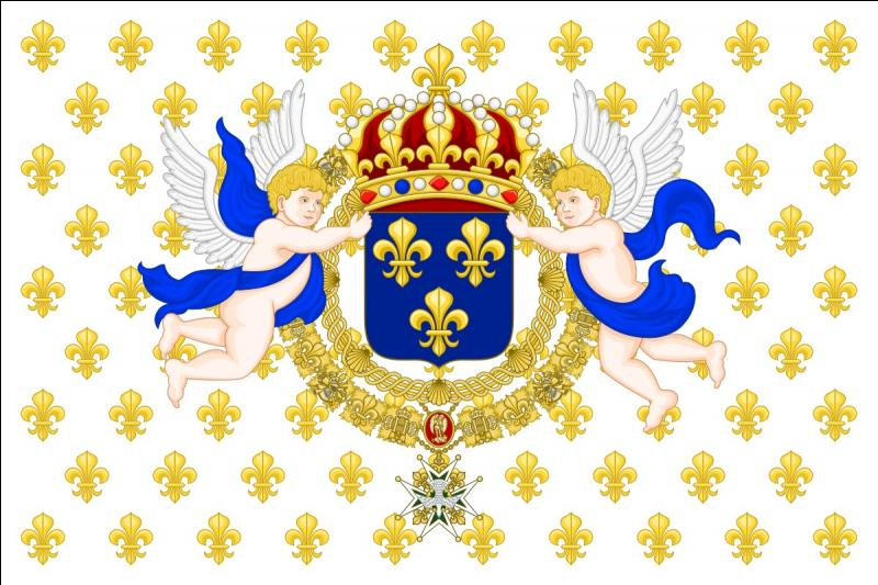 Que représente ce drapeau de l'ancien régime ? A savoir qu'il a subi quelques modifications en fonction du roi régnant. Mais son principe reste similaire.