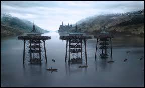 Quelles créatures se trouvent dans le lac noir ?