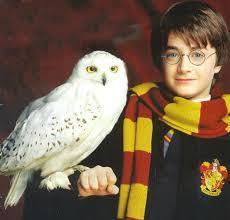 Les créatures magiques d'Harry Potter