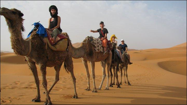 Partez dans le désert et découvrez la princesse !