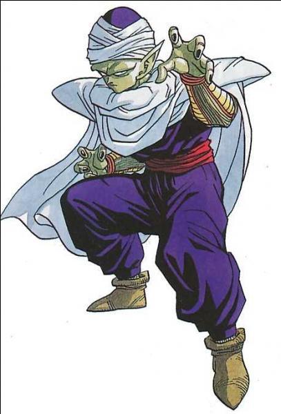Qui devient dieu à la place de Piccolo ?