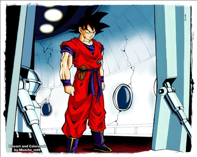Combien de Senzus amène Sangoku quand il part sur Namek ?