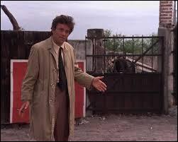 Dans quel épisode Columbo enquête-t-il au Mexique ?