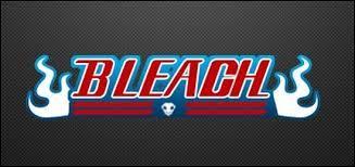 'Bleach' : pour terminer, le personnage dans cet anime proposé est...