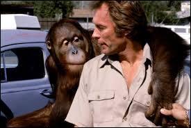 """Comment se nomme cet orang-outan, inséparable compagnon de Clint Eastwood dans les films """"Doux, dur et dingue"""" et """"Ça va cogner"""" ?"""