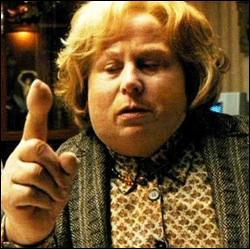 Après avoir gonflé sa tante comme un ballon, où réside Harry en attendant la rentrée ?