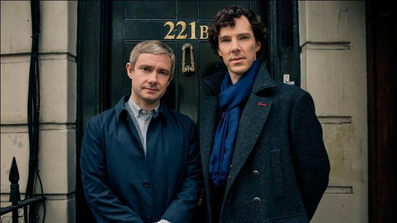 Qui est la propriétaire de l'appartement où habitent Watson et Holmes ?
