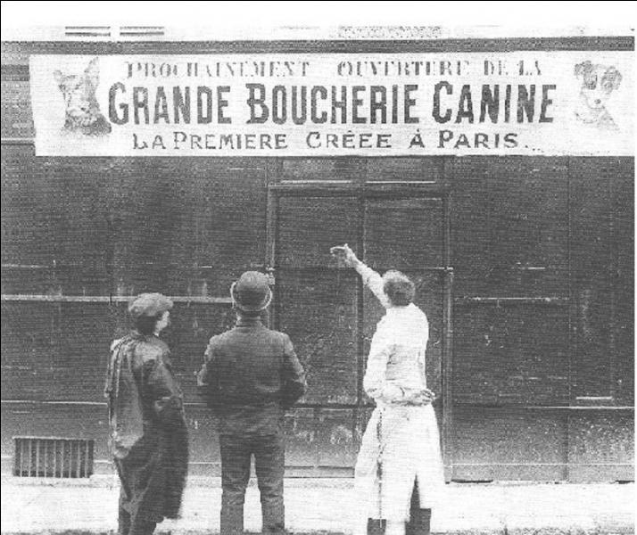 Les amis des animaux risquent de hurler ! Jusqu'à la fin du XIXe siècle, voir jusqu'au début du XXe siècle, que pouvait-on trouver, à Paris, rue Saint-Honoré ?
