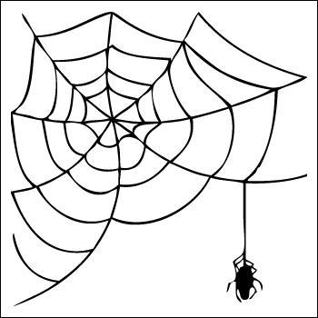 Si vous vous prenez dans cette toile d'araignée, vous tomberez à coup sûr sur lui.