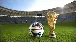 On commence avec du football : Quelle équipe est arrivée deuxième de la Coupe du monde 2014 ?
