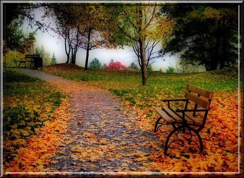 """""""Salut ! bois couronnés d'un reste de verdure ! Feuillages jaunissants sur les gazons épars ! Salut, derniers beaux jours ! """" Qui a écrit ce poème intitulé """"L'automne"""" ? (clip)"""