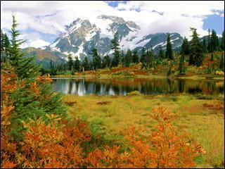 En automne, après les premières gelées, peut se produire une période de temps ensoleillé et radouci. Quel est son nom en Europe ?